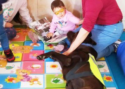 labradoreslalunadelcapitan_perros_lectores